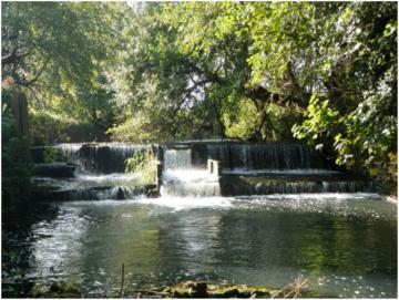 Durfold Weir