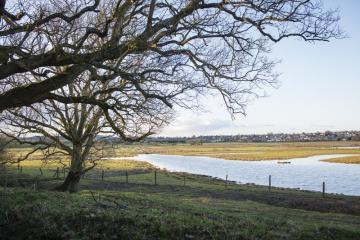 RSPB Pulborough Brooks Nature Reserve. Image by Eleanor Bentall (rspb-images.com)
